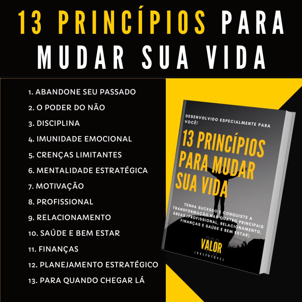 Banner 13 principios